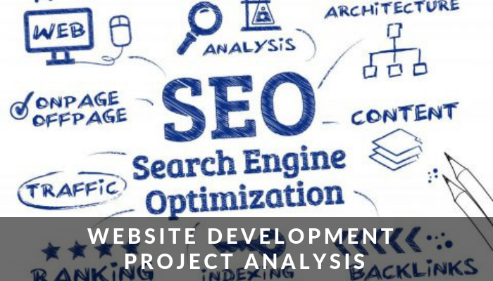 Website Development Project Analysis